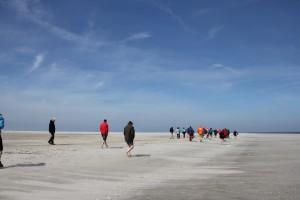 Lopen op zandplaat -kl