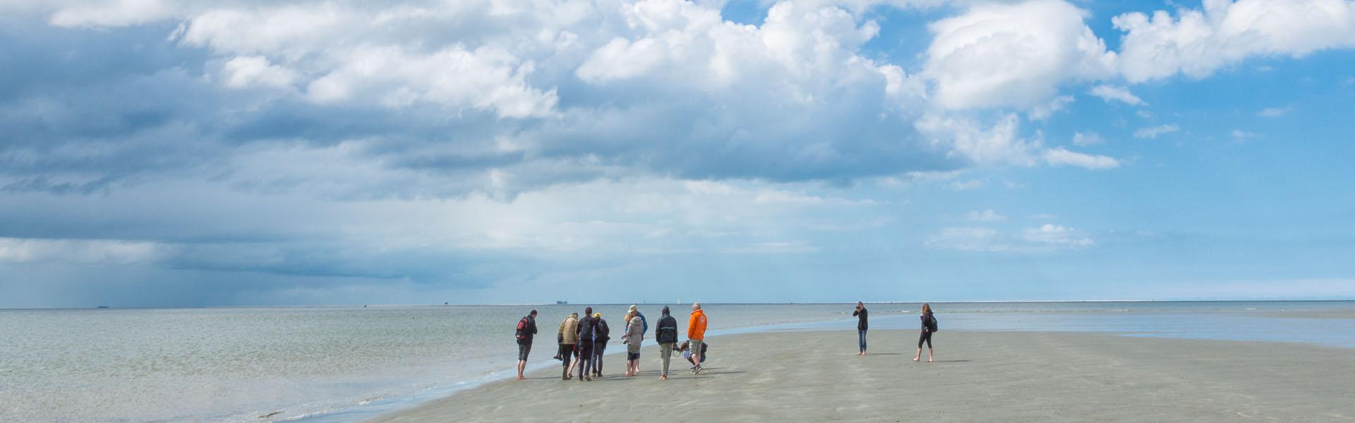 Lopen over de bodem van de Waddenzee
