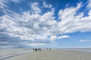 Wandelen op zandplaat