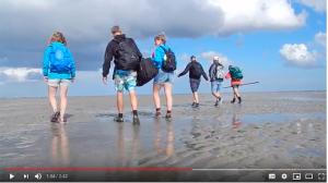 Sneak Preview Wadlopen naar Schiermonnikoog